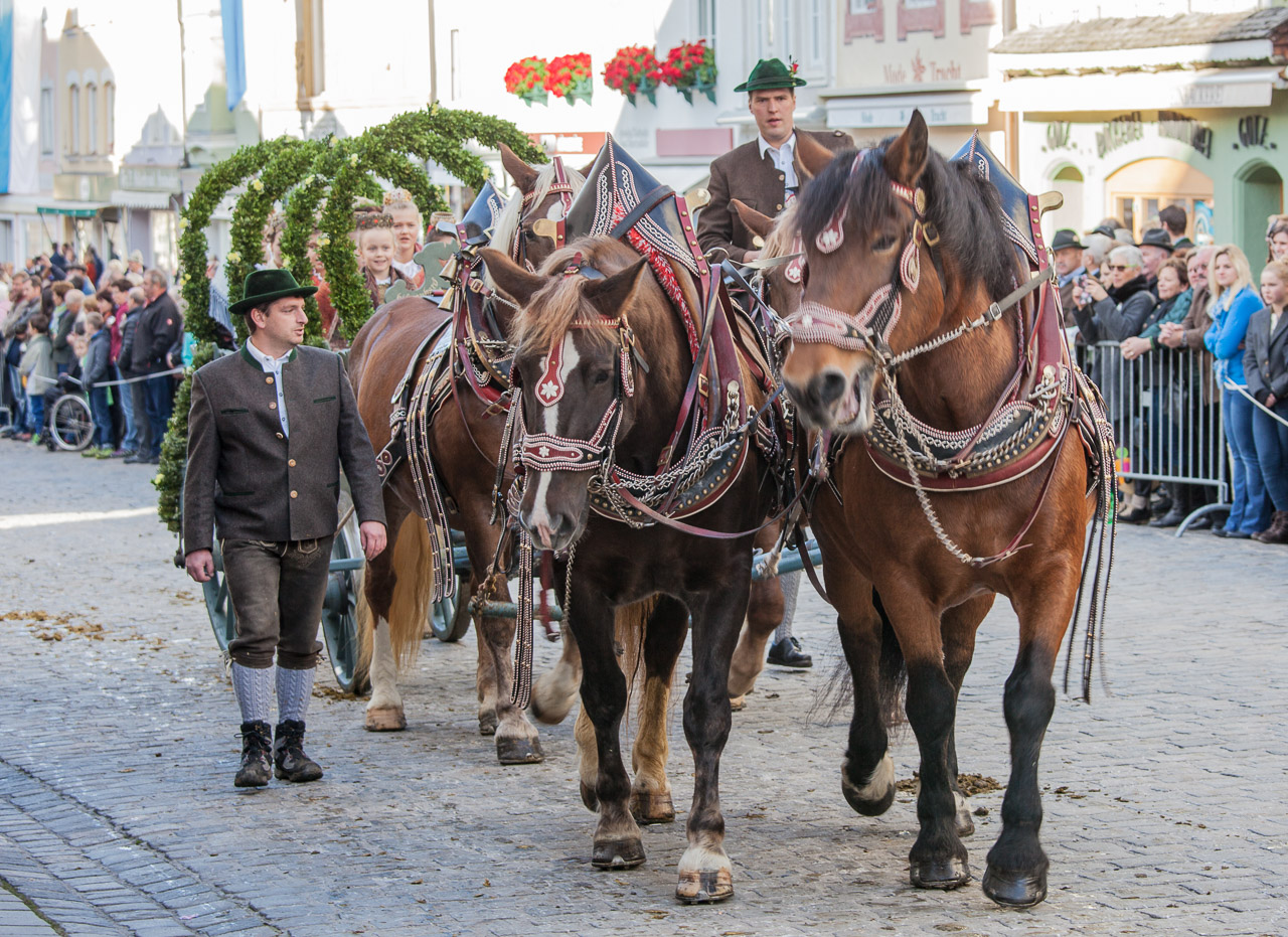 japan-in-muenchen-festival-mit-pferden-img_7529
