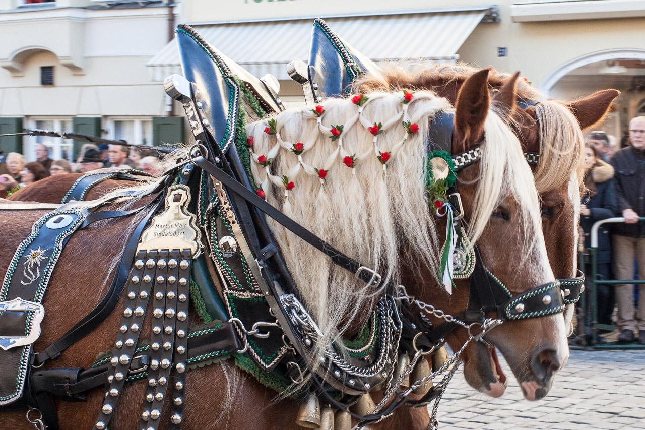 japan-in-muenchen-festival-mit-pferden2-img_7772