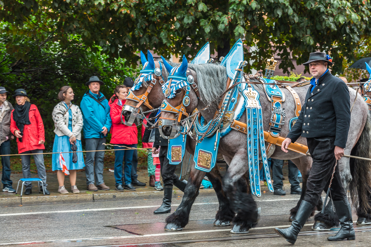 Custom Parade at Oktoberfest 2016 in Munich, Bavaria